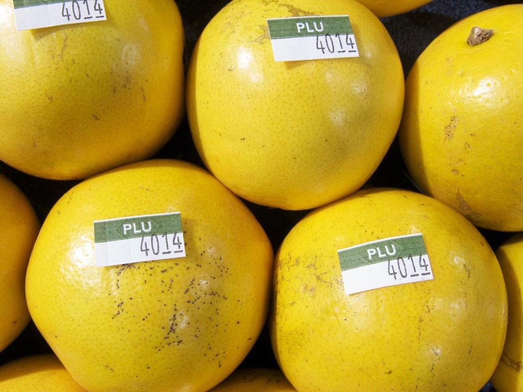 چاپ برچسب میوه